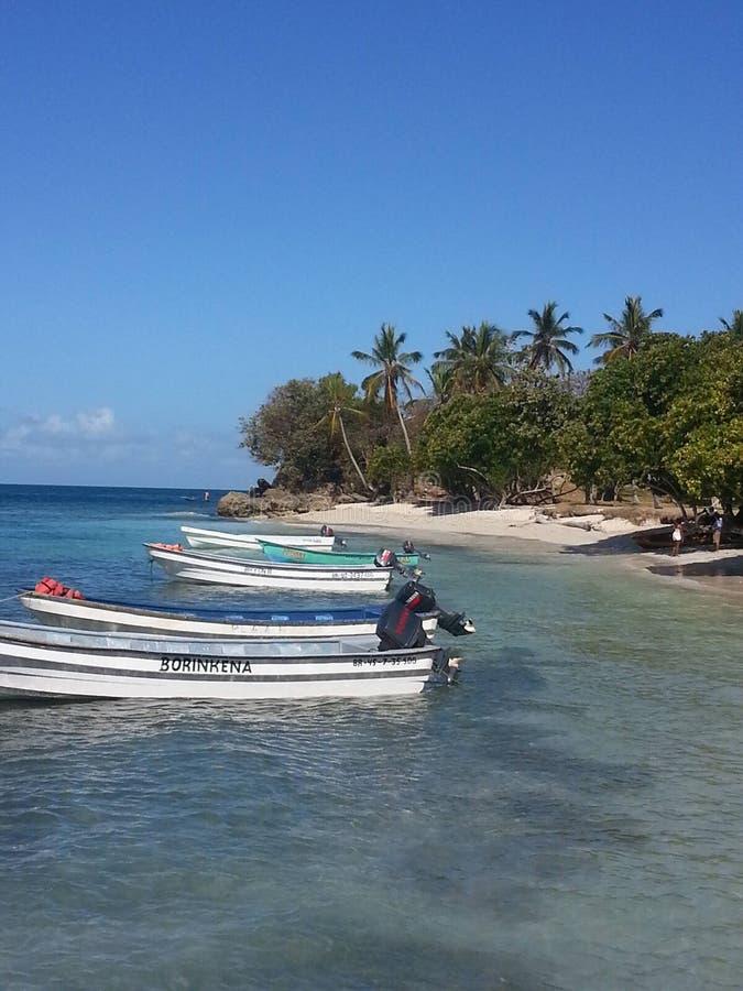 Escena tropical de Vaction con los barcos y las palmeras fotos de archivo libres de regalías