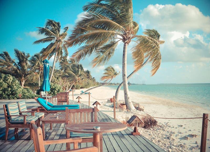 Escena tropical ventosa de la playa imagen de archivo libre de regalías