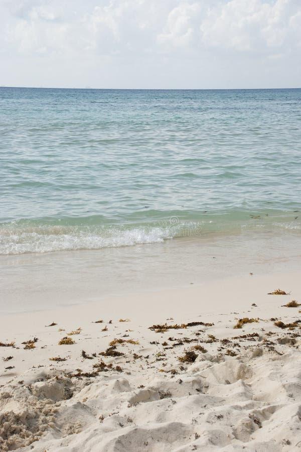 Download Escena Vertical De La Playa Con El Océano Del Caribe Azul Claro Foto de archivo - Imagen de blanco, arenoso: 44857332