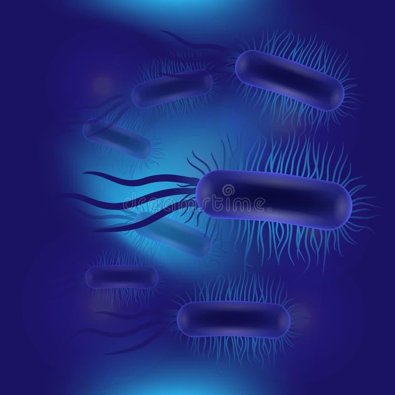 Escherichia coli-virus vector illustratie