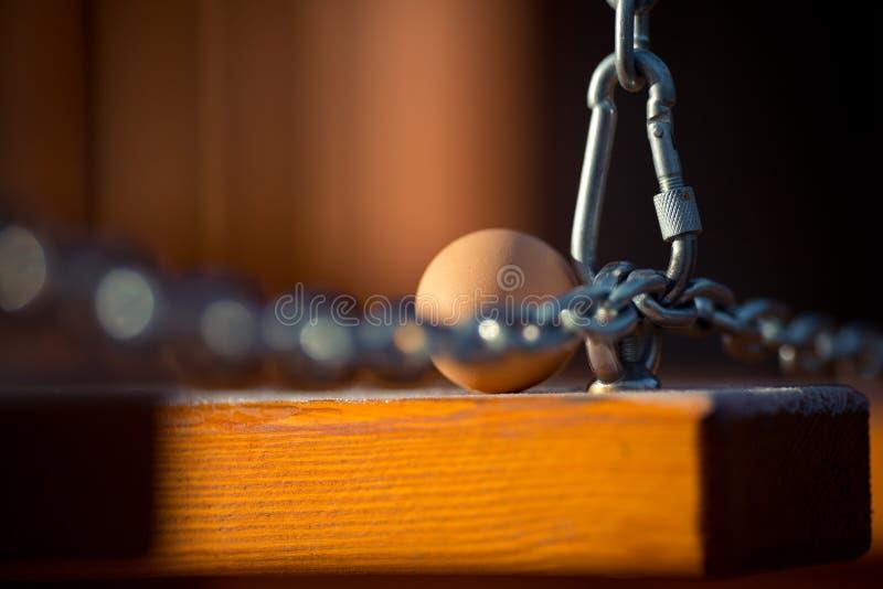 Escogió recientemente los huevos en base de madera con helada en invierno imagen de archivo libre de regalías
