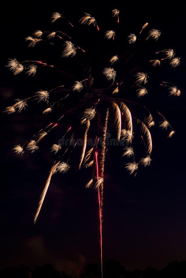 Escoja la explosión de un fuego artificial foto de archivo