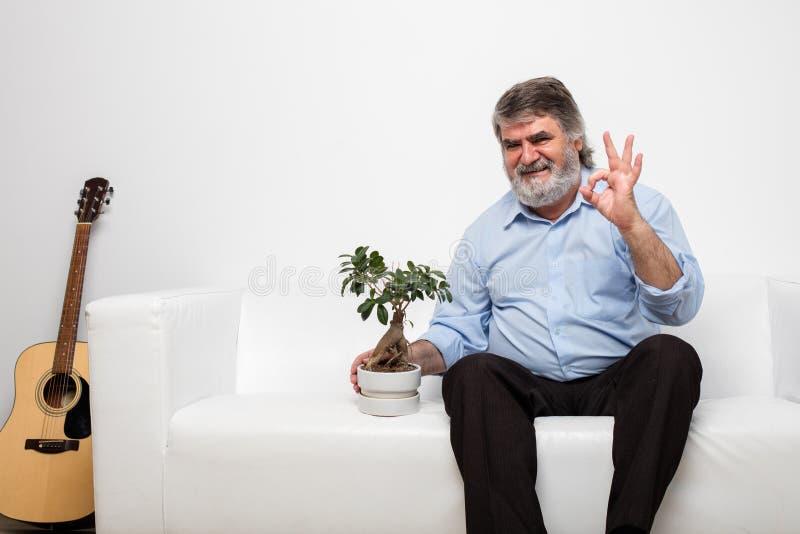 Escoja a los viejos hombres en el sofá blanco con un bonsai foto de archivo