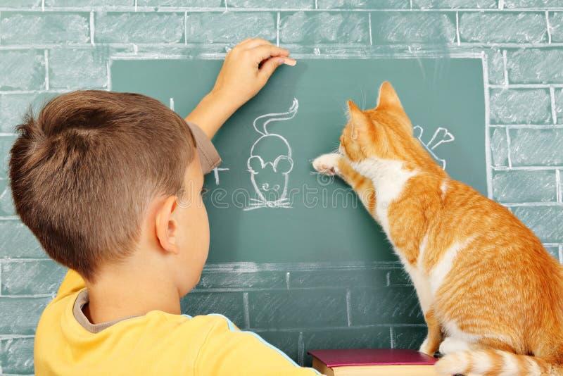 Escola do gato foto de stock royalty free