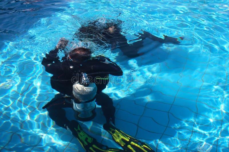 Escola do mergulho imagem de stock