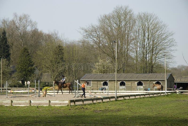 Escola para a equitação imagens de stock