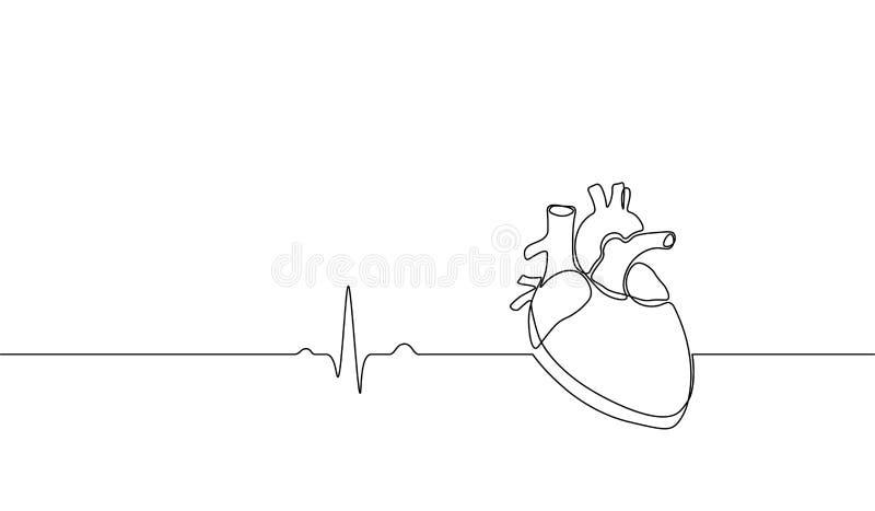 Escolha a linha contínua silhueta humana anatômica do coração da arte Desenho de esboço saudável do esboço do projeto de conceito ilustração do vetor