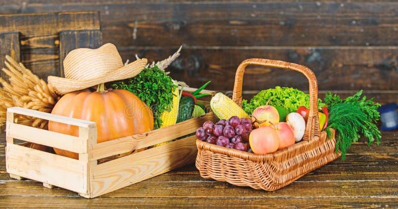 A escolha nutritiva colheita rica do outono vitamina sazonal Alimento org?nico e natural Halloween compra no supermercado imagens de stock royalty free