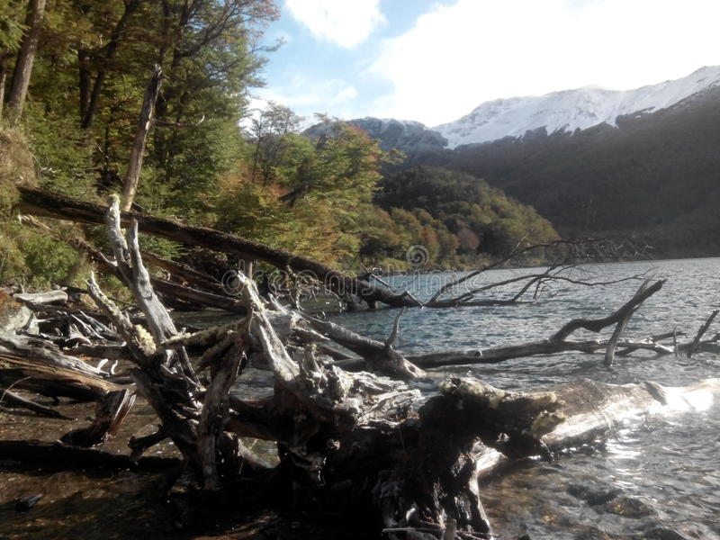 Escondido de Lago - Argentine photos stock