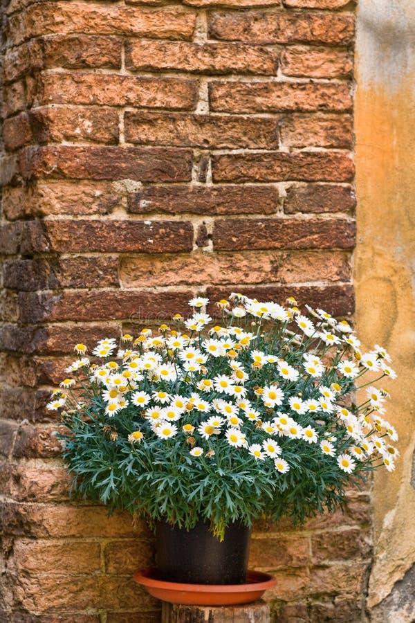 Escondrijo pintoresco de Toscana fotografía de archivo