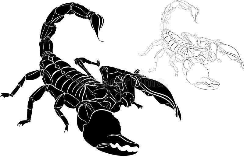 Escorpión aislado en el fondo blanco ilustración del vector