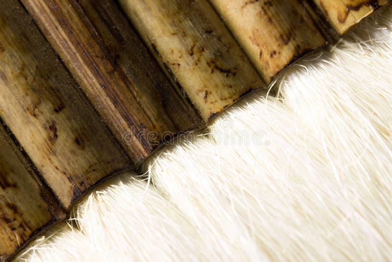 Escova de cabelo da cabra imagens de stock royalty free