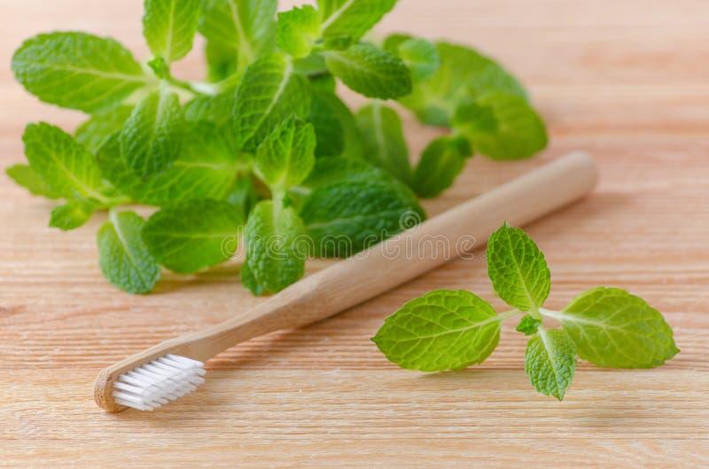Escova de dentes e hortelã de madeira naturais alternativas no fundo de madeira fotografia de stock