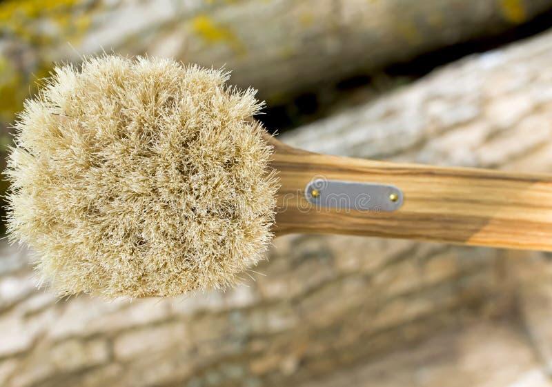 Escova de madeira com um punho fotos de stock royalty free