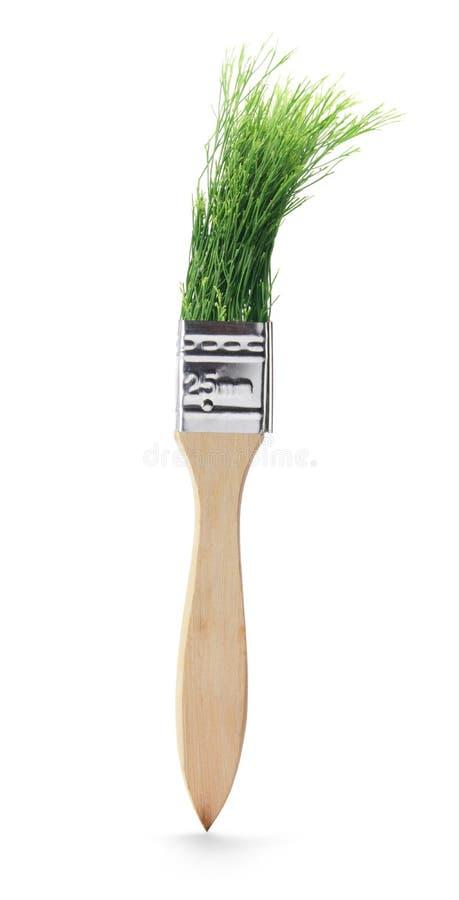 Download Escova De Pintura Com Folhas Do Pinho Foto de Stock - Imagem de decoração, branco: 16864978