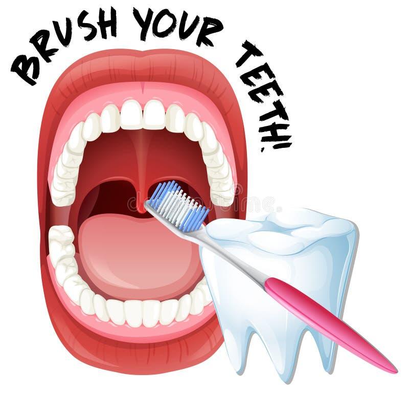 Escova humana da boca e dos dentes ilustração royalty free