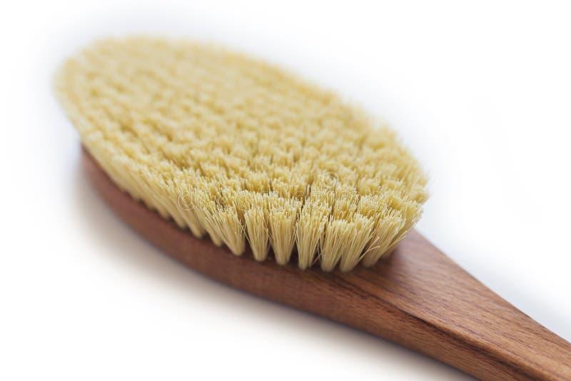Escova orgânica dos termas para a massagem seca Escova do cacto massagem das Anti-celulites Conceito da beleza dos termas foto de stock royalty free