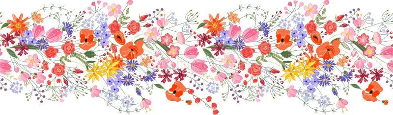 Escova sem emenda do teste padrão Grupo de flores do campo ilustração do vetor