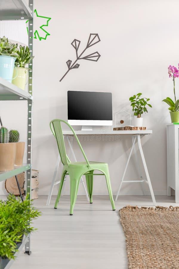 Escritório domiciliário de Minimalistic com cactos e plantas fotografia de stock royalty free