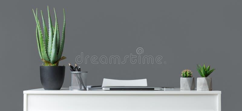Escritório interior com plantas, fundo cinzento de Minimalistic fotos de stock royalty free
