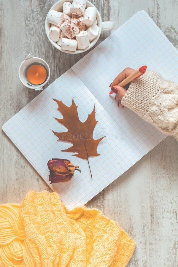 Escrita da mão da mulher no bloco de notas, na xícara de café, na rosa secada e na folha do outono Fundo bonito do inverno do out fotos de stock royalty free