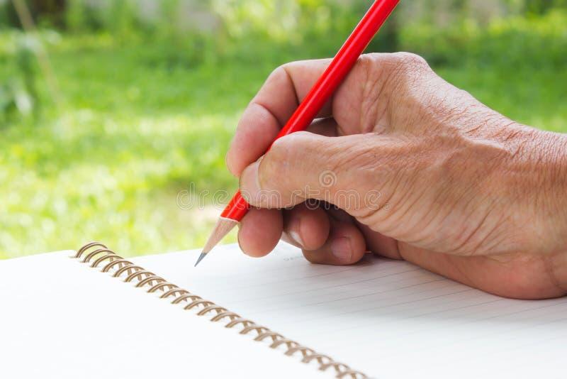 Escrita do assistente com lápis vermelho imagens de stock royalty free
