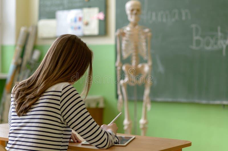 A escrita do estudante fêmea nota usando a tabuleta digital na turma de Biologia Educação da geração Z imagens de stock royalty free