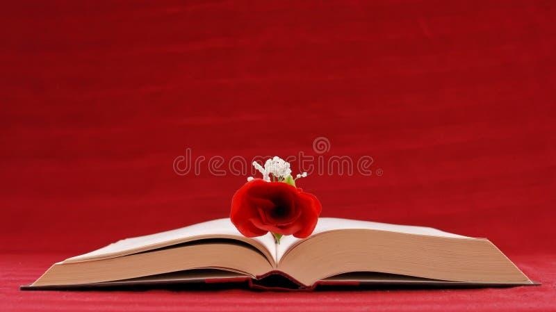 Escrita romântica foto de stock royalty free