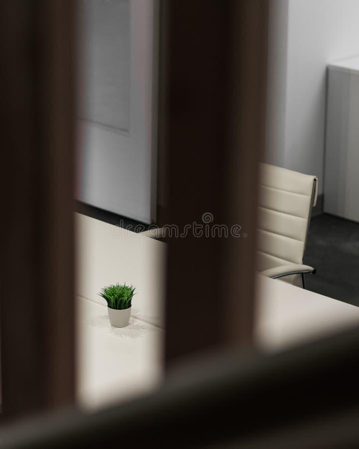 Escritorio del diseño interior con el Houseplant fotos de archivo libres de regalías
