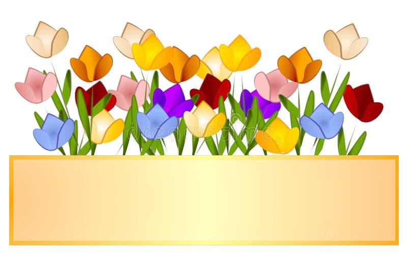 Escritura de la etiqueta de la insignia de los tulipanes del jardín del tulipán ilustración del vector