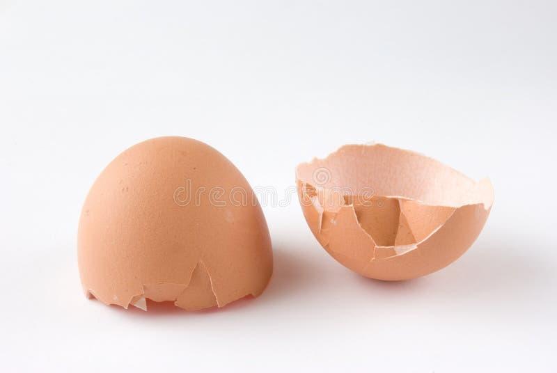 Escudo de ovo quebrado fotografia de stock