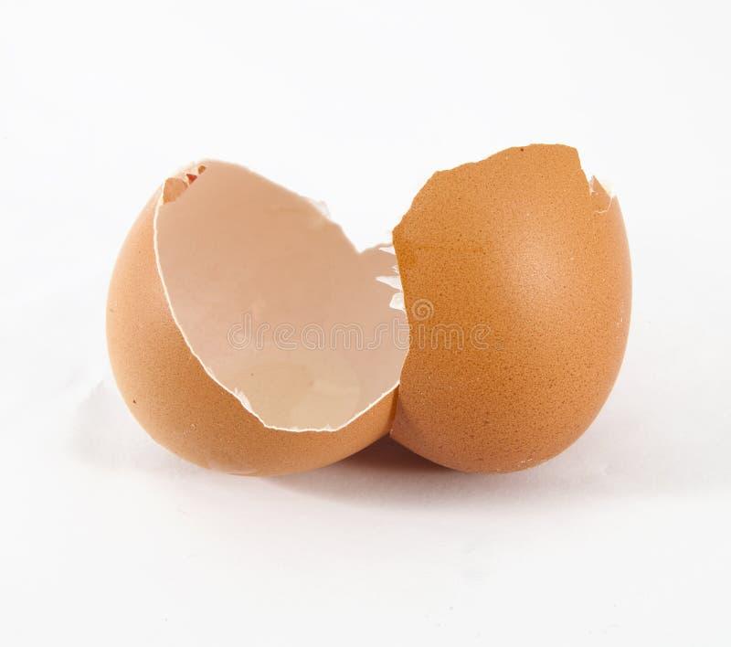 Escudo de ovo quebrado imagens de stock