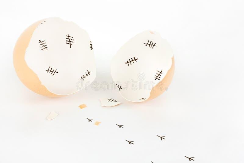 Escudo de ovo quebrado com as marcas do registro internas e as pegadas do pintainho fotografia de stock