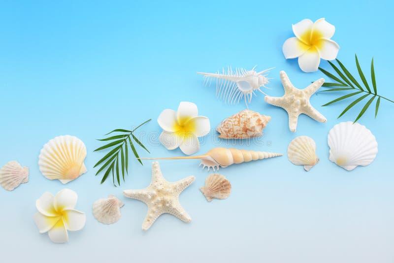 Escudos do mar com flores imagem de stock