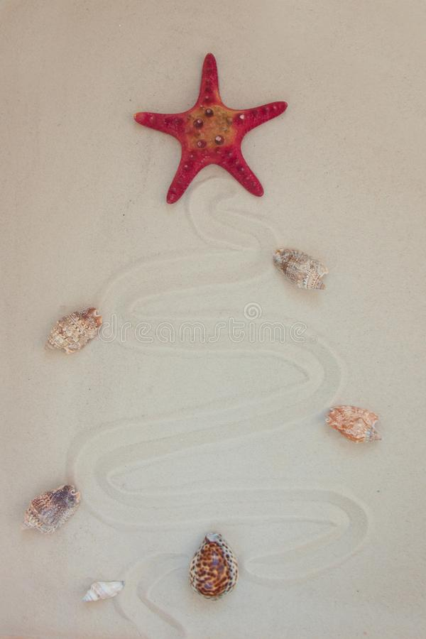 Escudos do mar e peixes vermelhos da estrela no Sandy Beach com espaço da cópia para o texto Conceito do Natal de Noel foto de stock royalty free