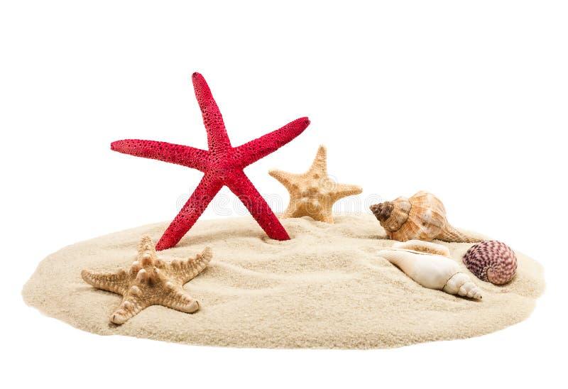 Escudos e areia do mar fotografia de stock royalty free