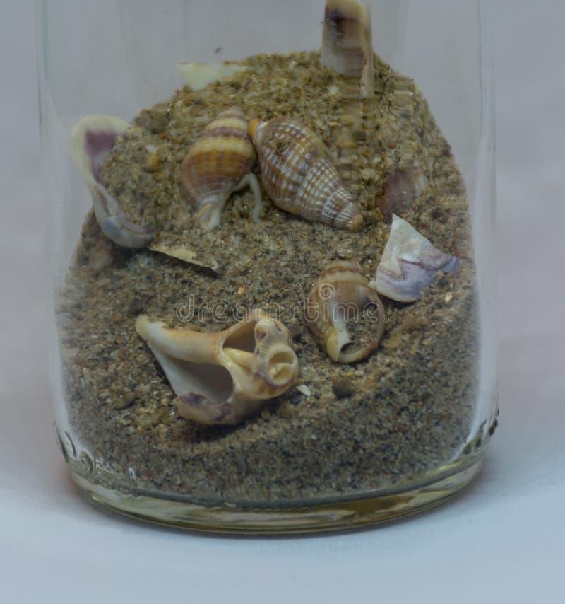 Escudos e areia do mar em uma garrafa no fundo branco imagens de stock
