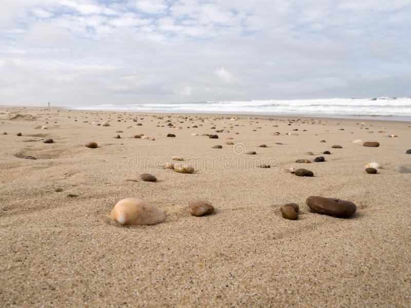 Escudos e rochas na praia na maré baixa imagem de stock
