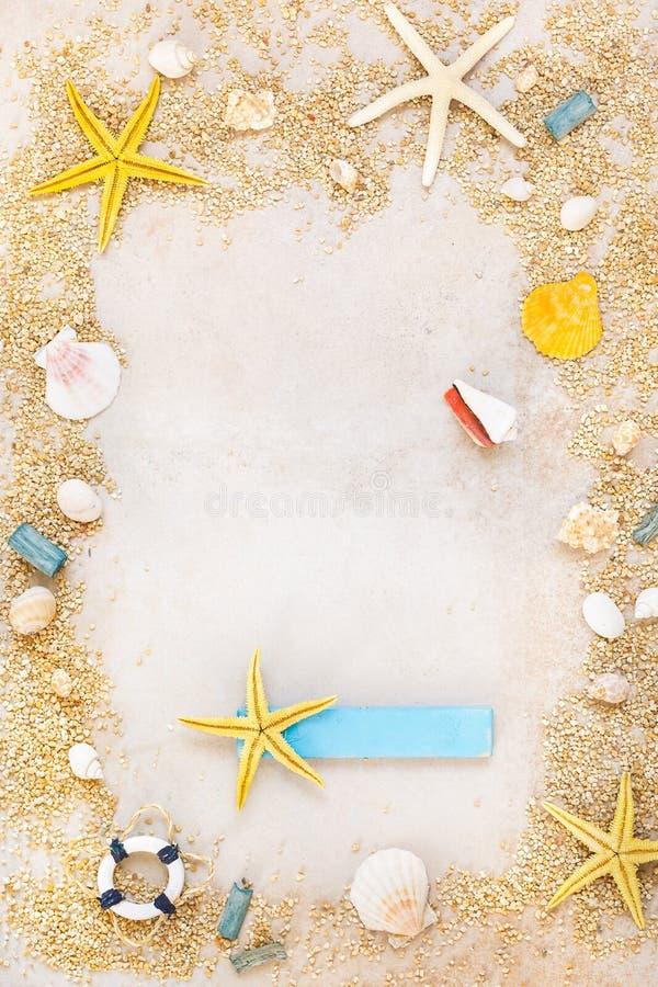 Escudos e starfishes no fundo da areia foto de stock royalty free