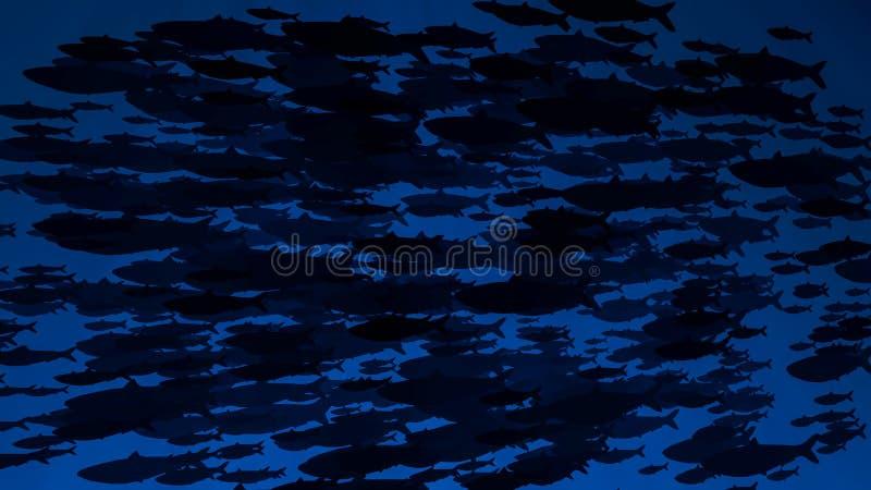 Escuela de las nadadas de los pescados más allá de la cámara siluetas Haces y rayos del brillo de Sun en submarino del fondo mari imagen de archivo