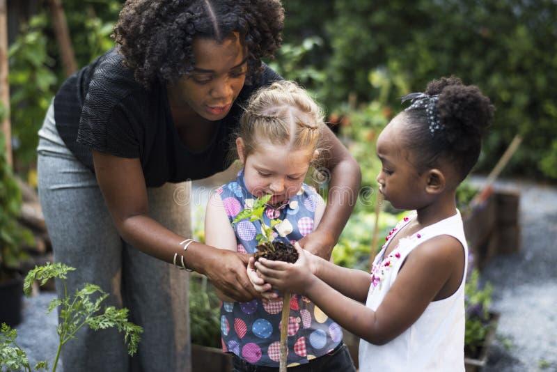 Escuela del profesor y de los niños que aprende cultivar un huerto de la ecología imagen de archivo libre de regalías