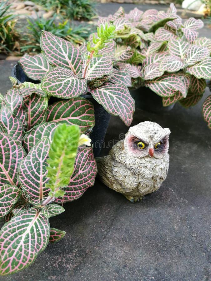 Escultura de argila pequena da coruja foto de stock