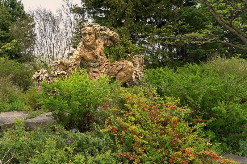 Escultura de Linnaeus en jardín botánico fotos de archivo libres de regalías