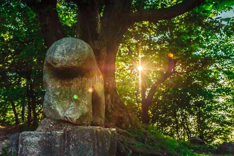 Escultura de piedra pagana céltica fotografía de archivo