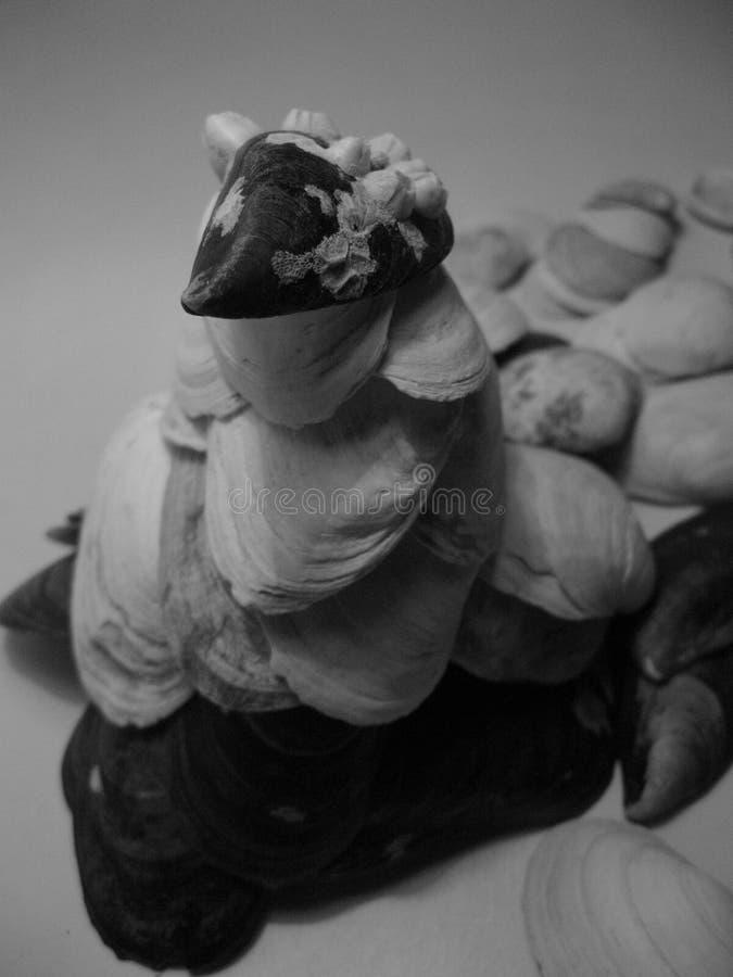 Escultura de Shell Abstracção natural fotografia de stock royalty free