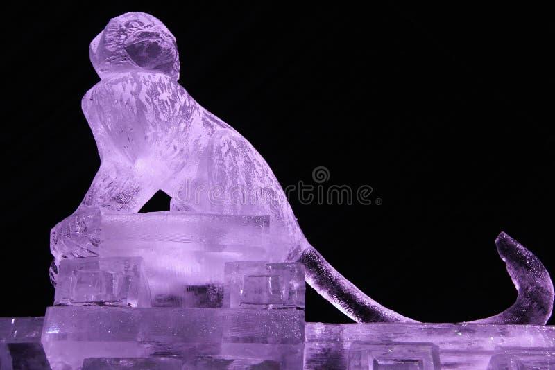 Escultura de um macaco do gelo fotografia de stock royalty free