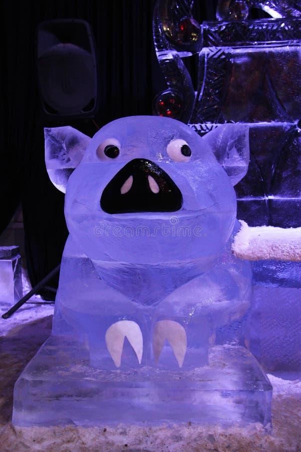 Escultura de um porco feito do gelo imagem de stock