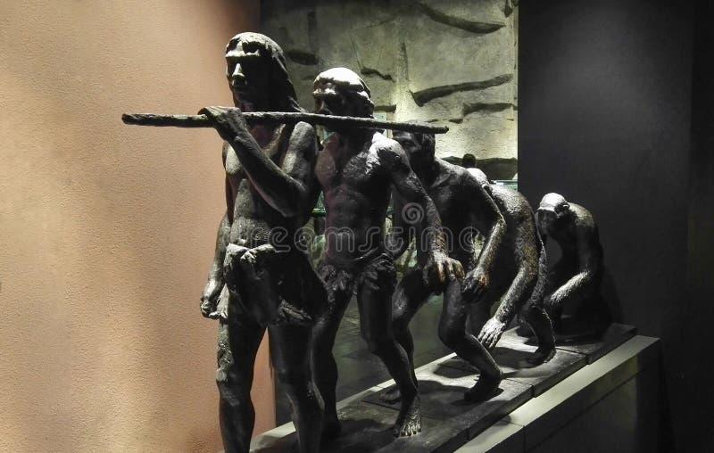 Escultura del cobre de la evolución humana fotografía de archivo