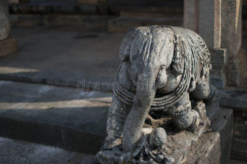 Escultura del elefante en piedra en el templo hindú en Beluru, Karnataka, la India fotografía de archivo libre de regalías