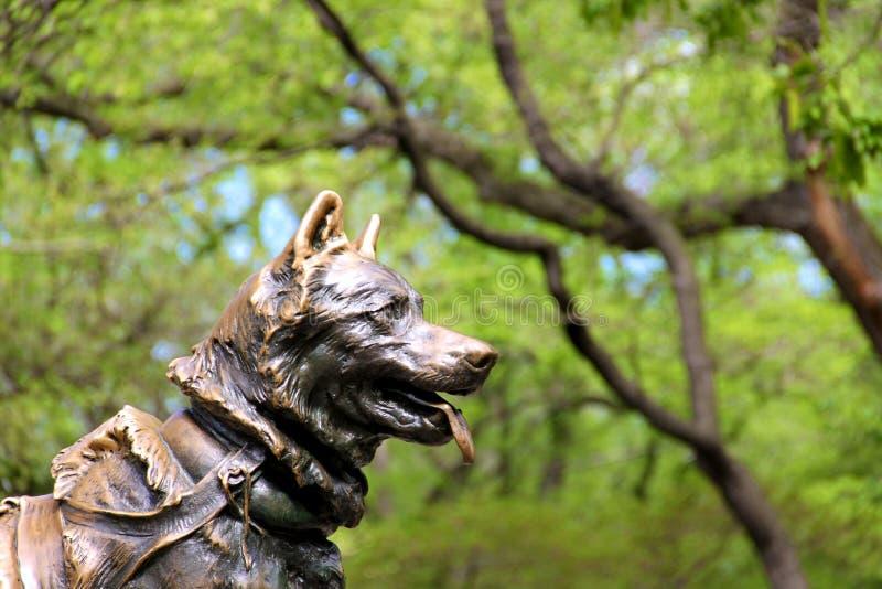 Escultura del perro en Central Park, Nueva York foto de archivo libre de regalías